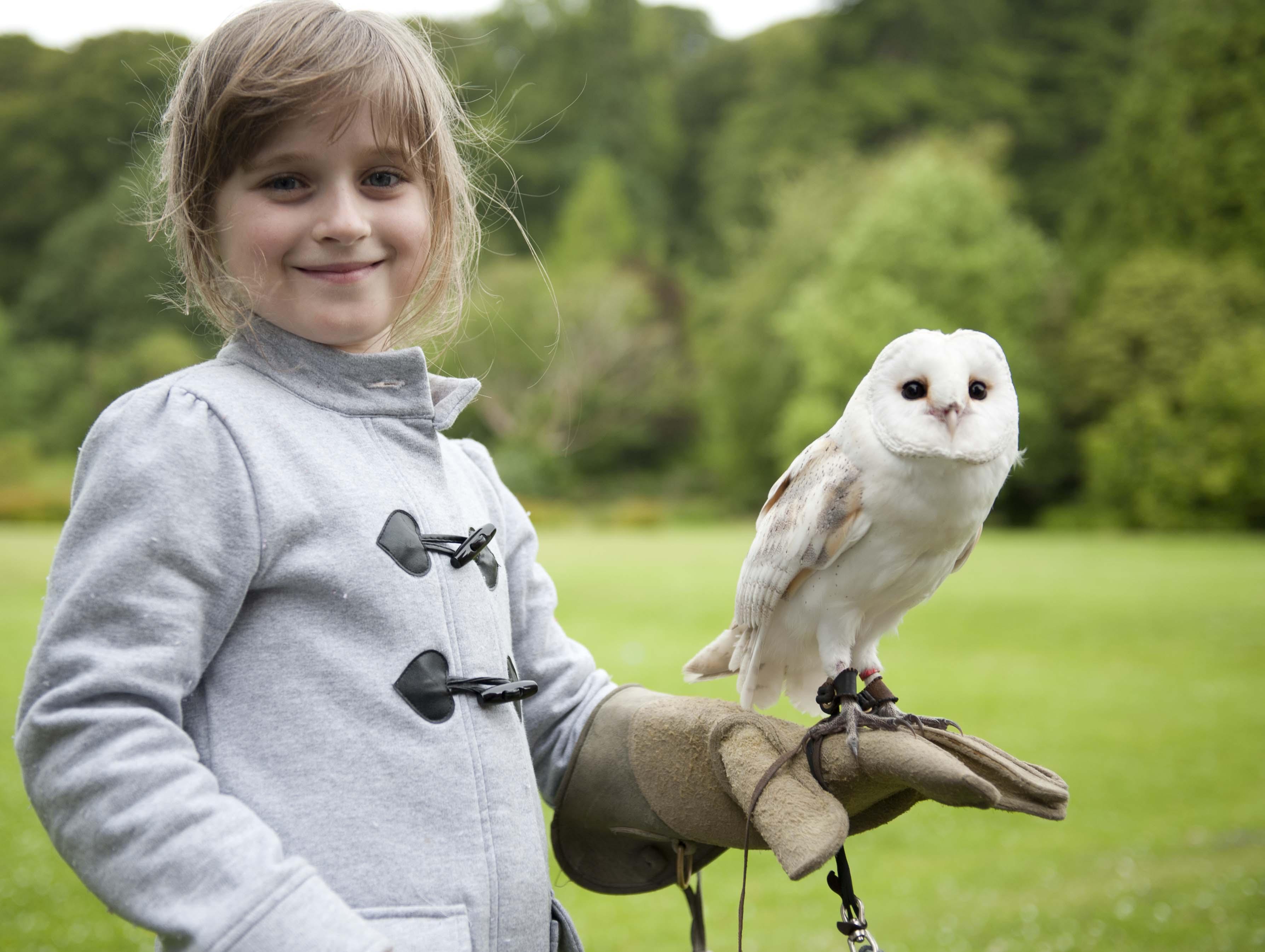 ravenglass owls and muncaster castle our european trip