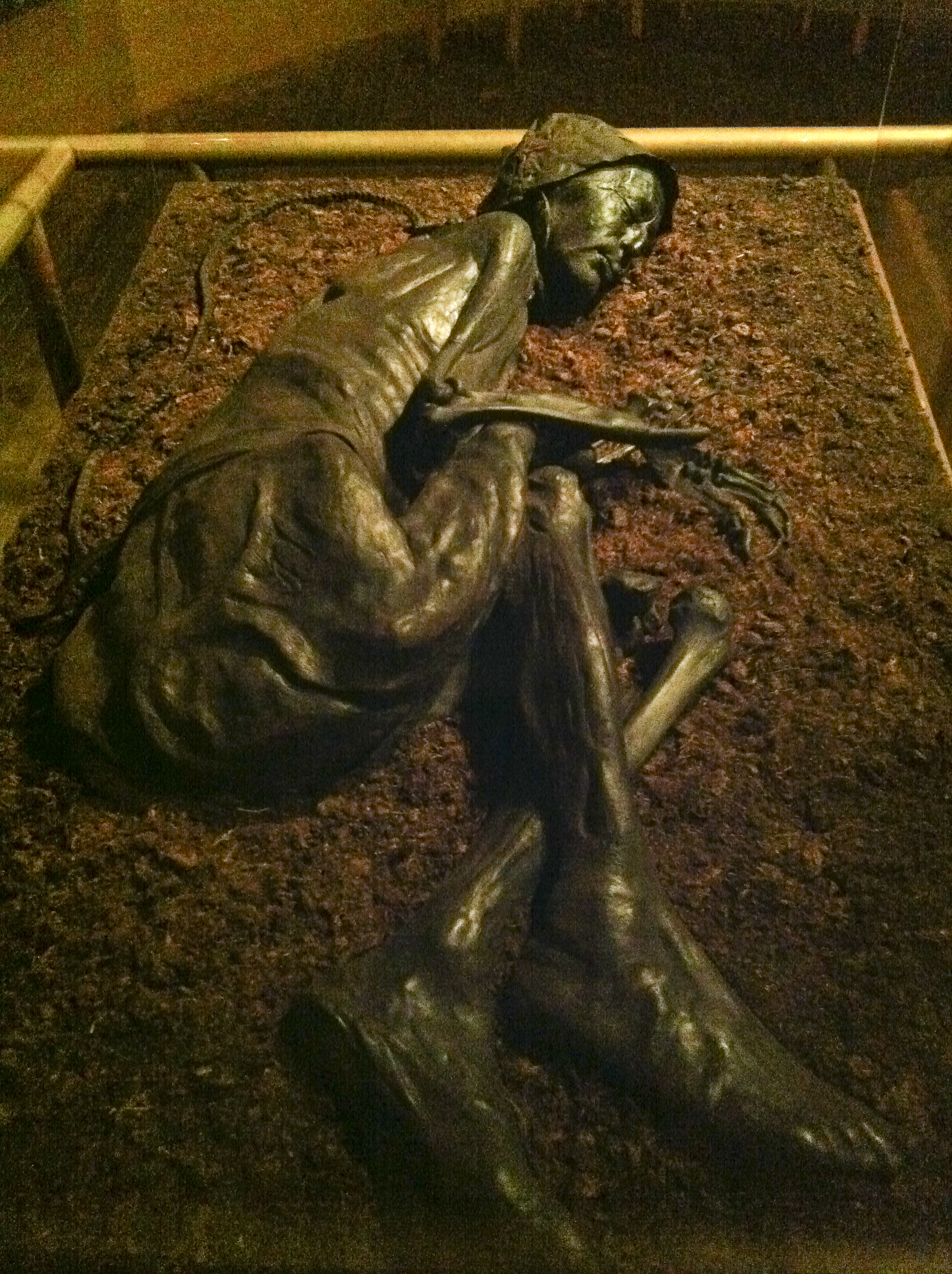 the tollund man Tollund man by susan k lewis posted 020706 nova he has become the face of iron age europe but in 1950, when men cutting peat near the village of tollund.